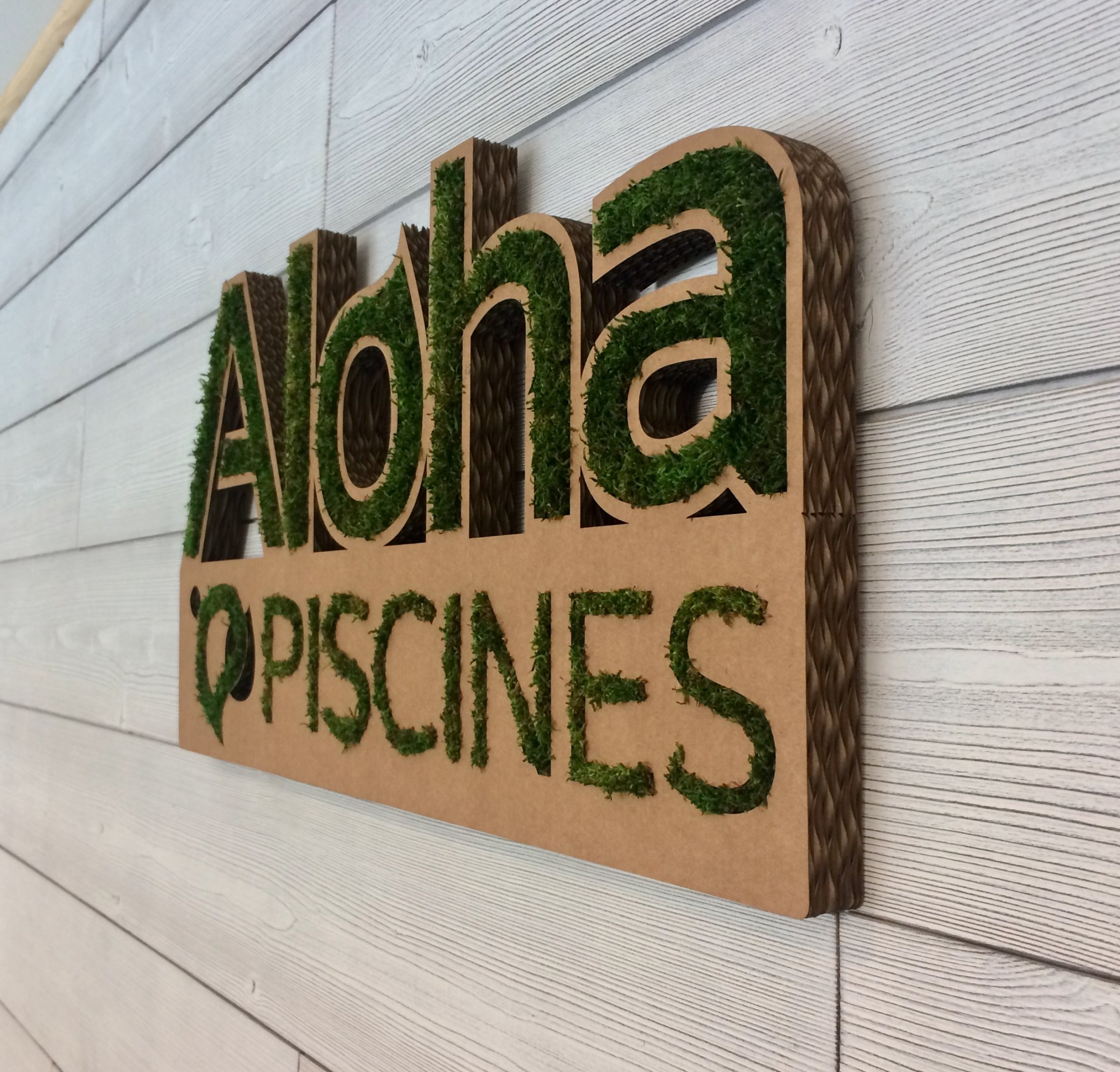 Déco Mousse Aloha 1