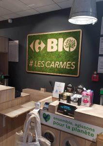 Logo végétal et carton CARREFOUR BIO réalisé par CNK DESIGN